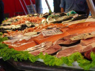 Patří ryby do našeho jídelníčku?